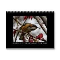 Australian native birds wall calendars by apollosgirl