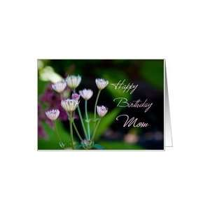 Happy Birthday Mom from Son   Garden Flowers Card Health