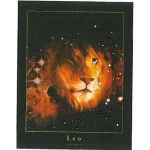 Leo Zodiac Sign Poster: Everything Else