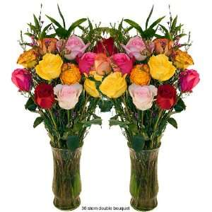 Valentines Day Long Stem Roses   23 Long   Mixed Colors   24 Stems of