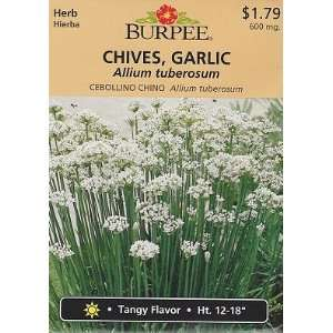 Burpee Garlic Chives Herb   165 Seeds Patio, Lawn