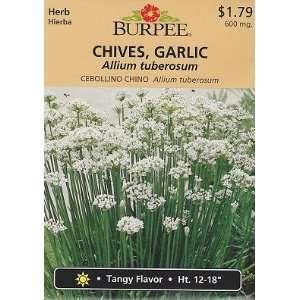 Burpee Garlic Chives Herb   165 Seeds Patio, Lawn