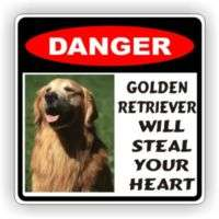 GOLDEN RETRIEVER STEAL HEART DECAL STICKER PET DOG