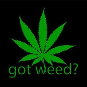 GOT WEED pot weeds marijuana medical t shirt XL