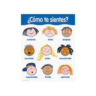 Chart How Do You Feel Spanish Toys & Games