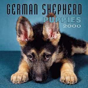 German Shepherd Puppy 2000 Mini Calendar (9780763120214