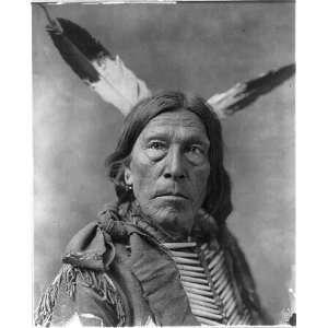 Gray Eagle,Indian,c1900,traditional dress,feathers: Home