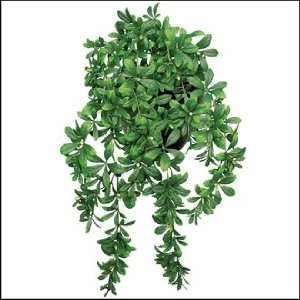 Outdoor Artificial Green Azalea 34 Hanging Vine no Flowers: