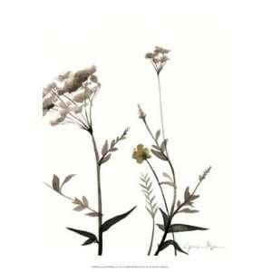 Watermark Wildflowers I by Jennifer Goldberger 13x16: Home