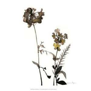 Watermark Wildflowers V by Jennifer Goldberger 13x16: Home