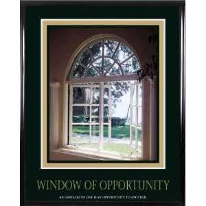 Vertiflex Window of Opportunity Framed Art