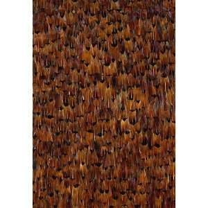 Ashland Pheasant by F Schumacher Wallpaper Home