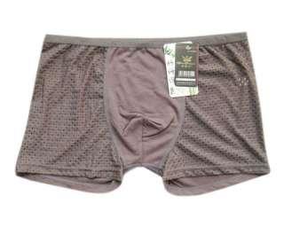 Men BAMBOO Silk Fiber Boxer Underwear Briefs SEAMLESS ULTRA Soft