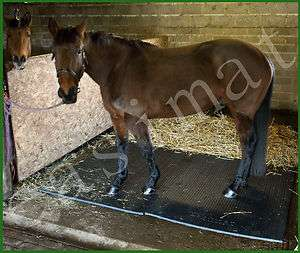 Stable Horse Mat EVA 34mm thick 6ft x 4ft