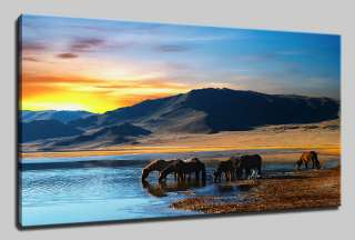 AFRICAN LANDSCAPE SUNSET CANVAS PRINT ART MANY SIZES & COLOURS & FREE