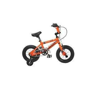 Tony Hawk 12 inch Otter Bike   Boys: Home Improvement