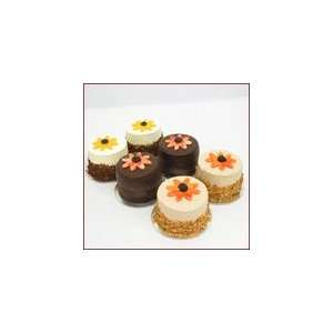3IN Crazy Daisy Cake Sampler #4  Grocery & Gourmet Food