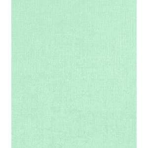 Light Green Flannel Backed Vinyl Fabric: Home & Kitchen