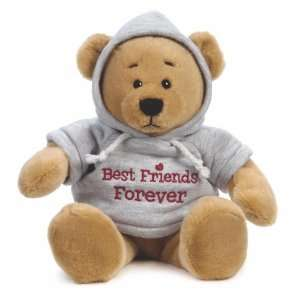 Ganz Message Hoodie Bear Best Friends Forever Toys