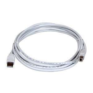 USB Cable. 2MUSB CABLE   ROHS  4Q USB. Type A Male USB   Type B Male