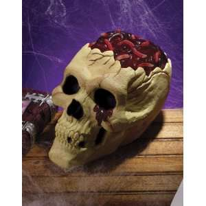 For All Occasions FW8476 Skull With Bloody Brain: Toys & Games