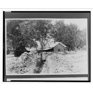 recent flood, house and trees in background] / Ewing,: Home & Kitchen