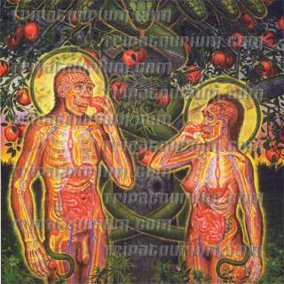 The Blotter Art Print Adam & Eve by Alex Grey